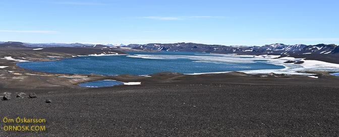 Veiðitölur úr 1. veiðiviku